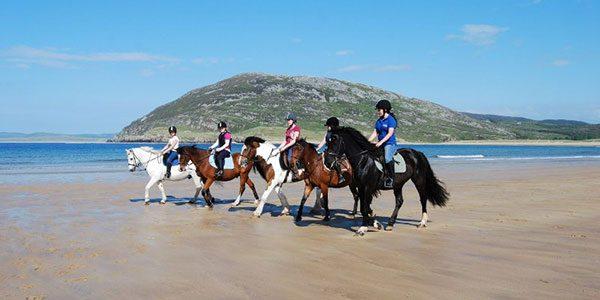 SD-HORSERIDING