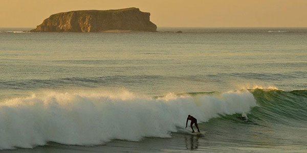 SD-SURFING
